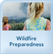 img_safetymod_wildfire