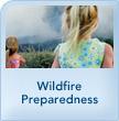 img_safetymod_wildfire