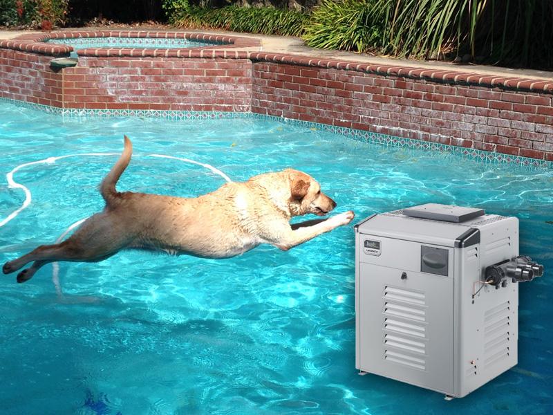 jandy-gas-pool-heaters